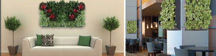 Living Walls from Plantasia Interiors