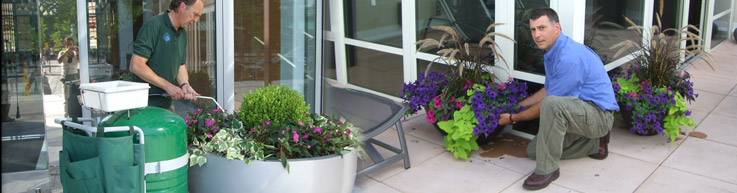 Interior and Exterior Plant Maintenance from Plantasia Interiors