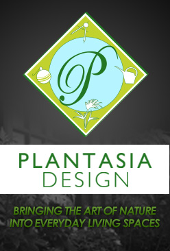 Plantasia Design Serving Boston to Providence